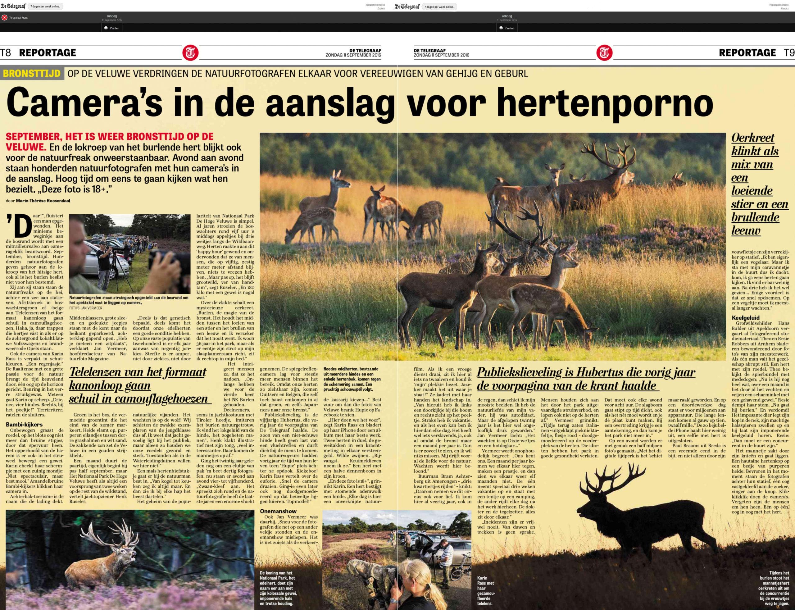 Reportage in de Telegraaf